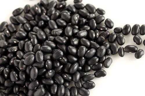 เมล็ดพันธุ์ถั่วดำ